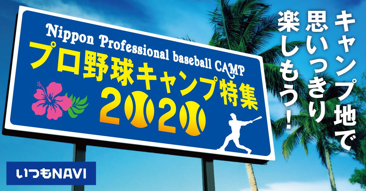 野球 キャンプ プロ 2021年プロ野球12球団キャンプ情報、一軍&二軍の日程とメンバー振り分け(SPAIA)