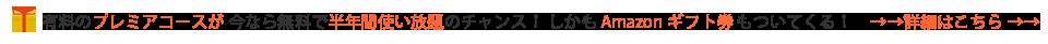 【新発売】 日置電機 絶縁抵抗計 4レンジ 絶縁抵抗計 アナログメグオームハイテスタ 日置電機 IR4042-10【】, ナイススタイル:02fbc750 --- appropriate.getarkin.de